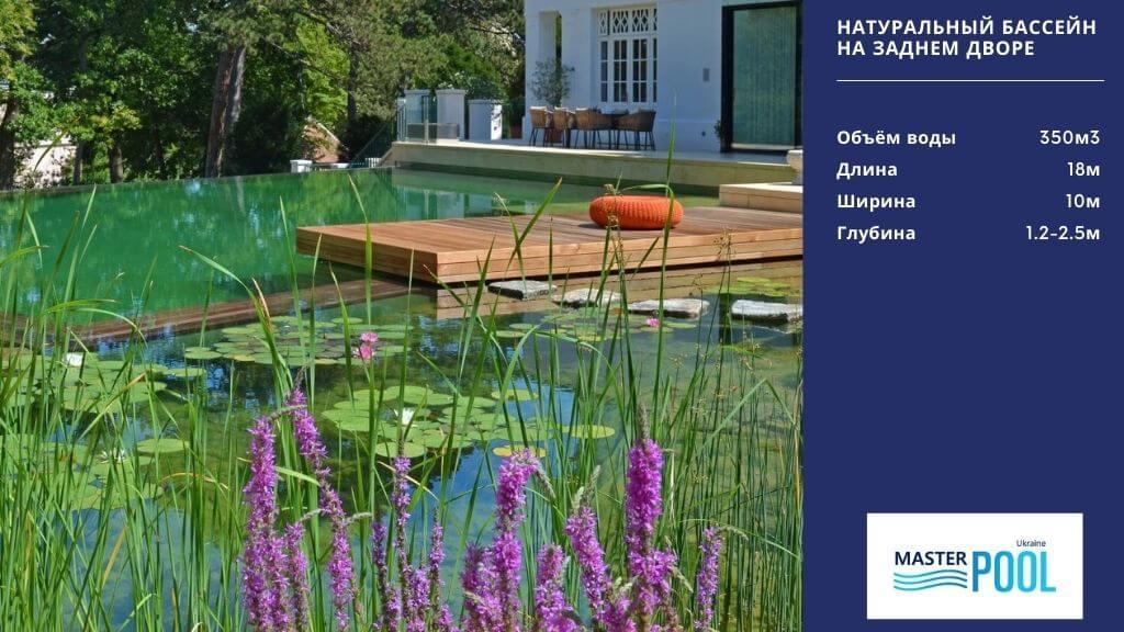 Натуральный бассейн на заднем дворе